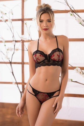 ensemble-lingerie-sexy-noir-et-broderie-rouge